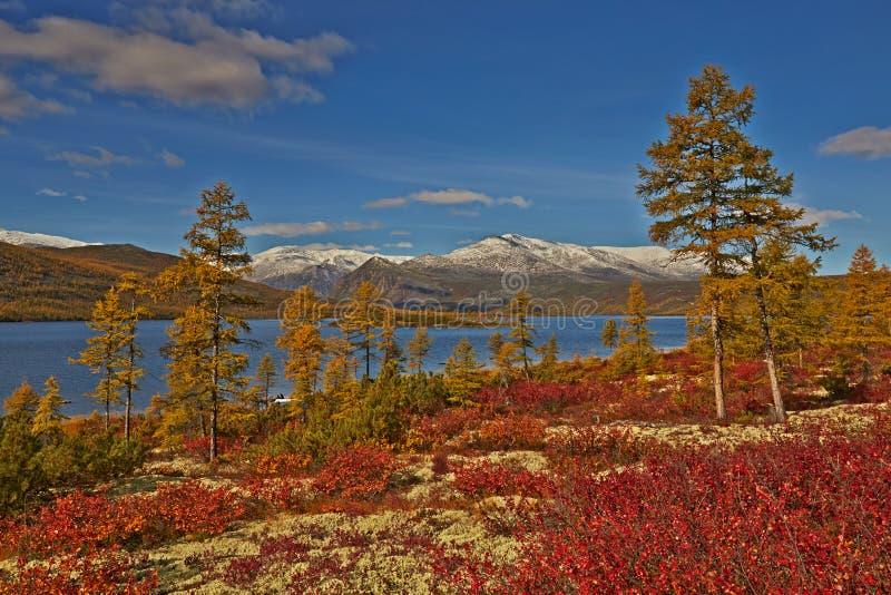 Download Autumn. Jack London's lake stock photo. Image of nature - 62980276
