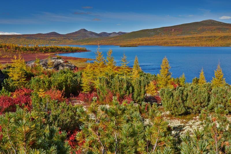 Download Autumn. Jack London's lake stock photo. Image of nature - 62984162