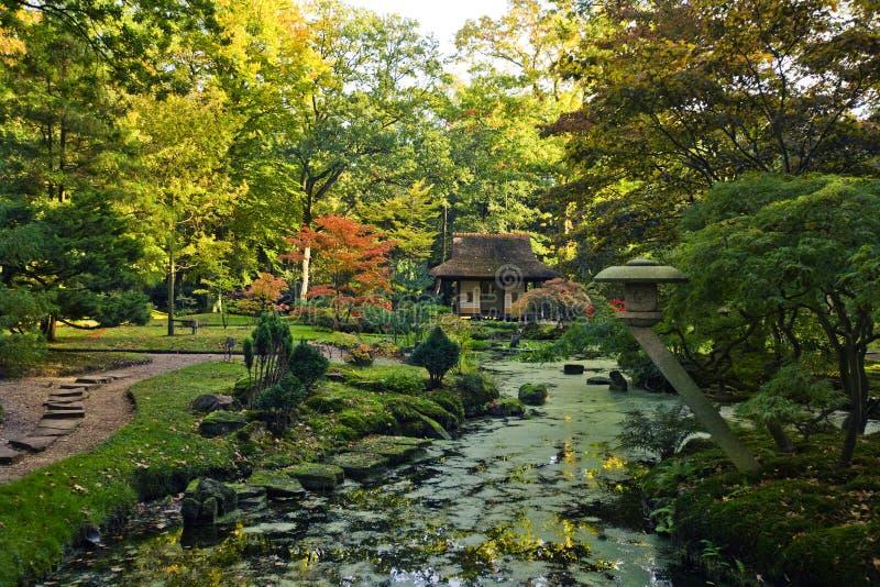 Autumn in japanese garden royalty free stock image