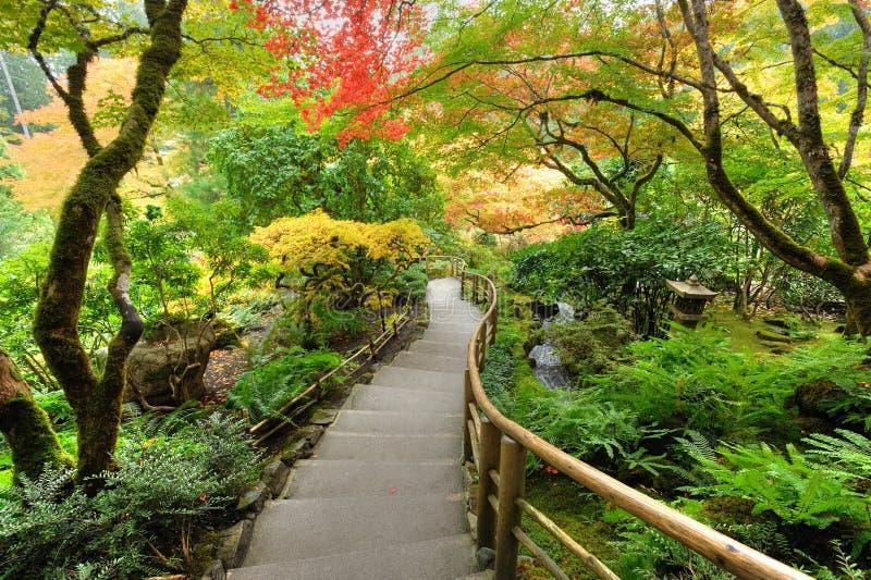 Autumn japanese garden stock photography