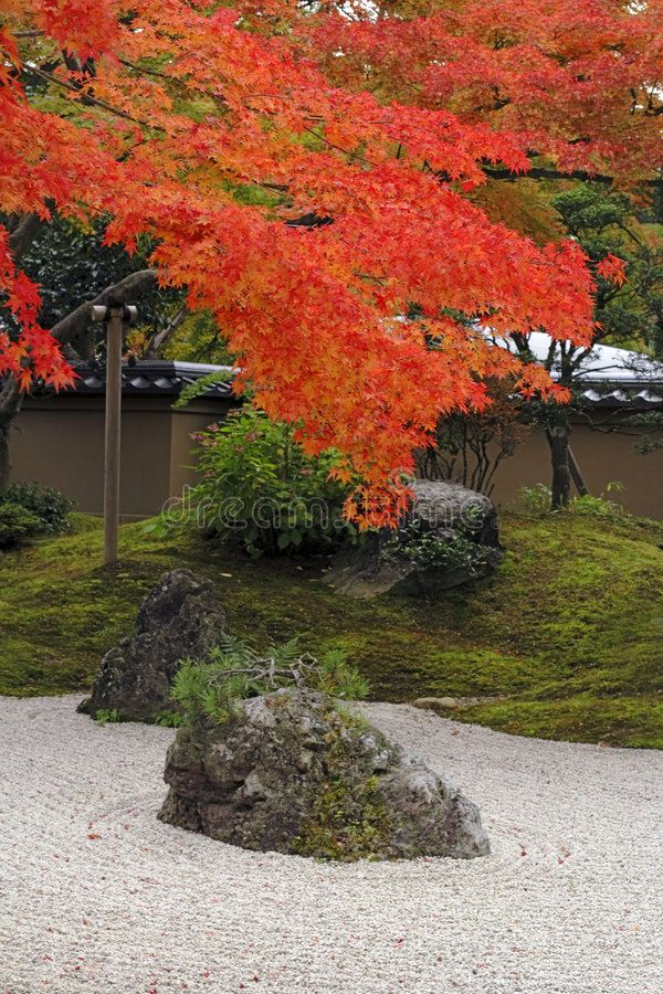 Autumn Japanese garden stock photos