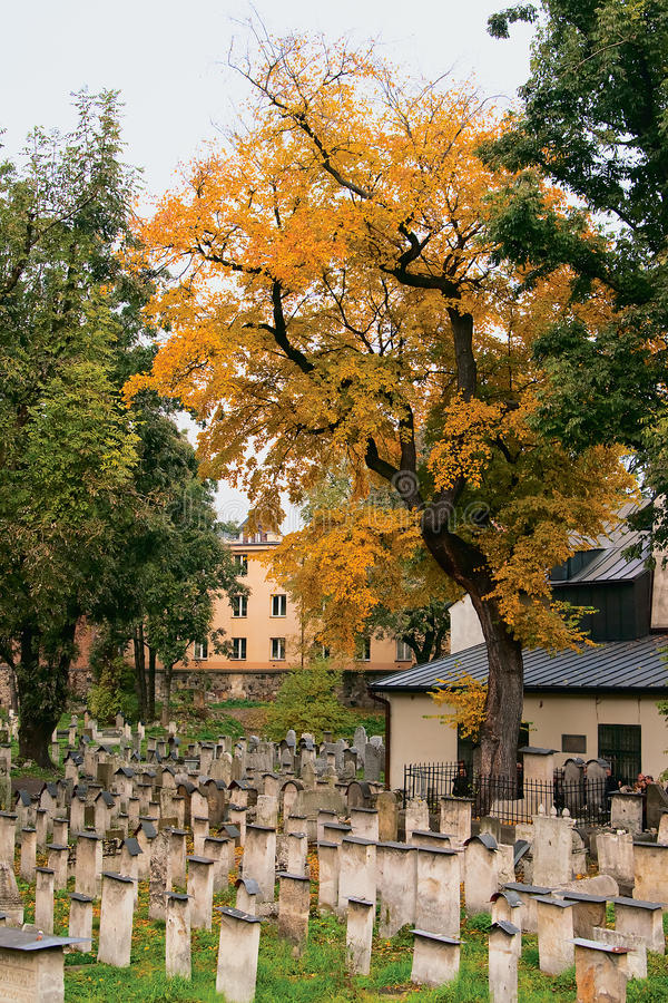 Download Autumn In A Jewish Cemetery Stock Photography - Image: 22306002