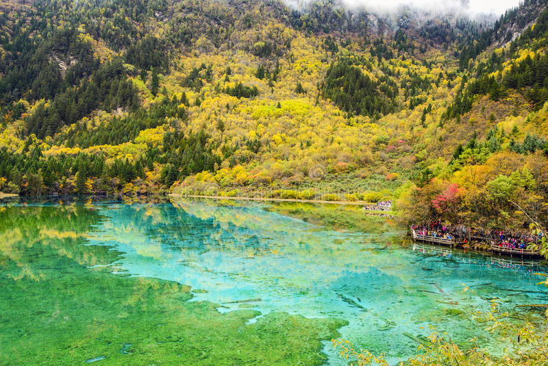 Autumn in Jiuzhaigou. SICHUAN, CHINA - OCTOBER 21: Tourists visit the Five Flower Lake during autumn season in Jiuzhaigou National Park on October 21, 2013 in stock photography