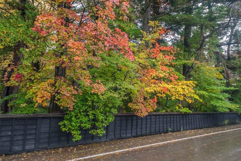 Autumn in kakunodate. Beautiful Autumn leaves in kakunodate Akita , Japan stock photo