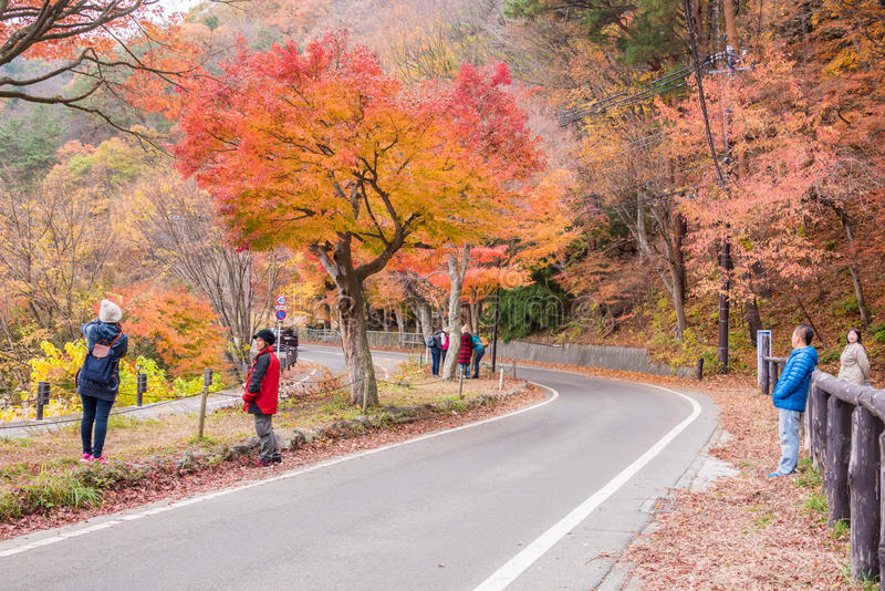 Autumn in Kawaguchiko royalty free stock photos