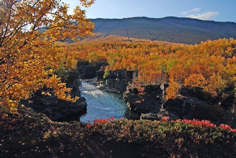 autumn krajobrazu zdjęcie stock