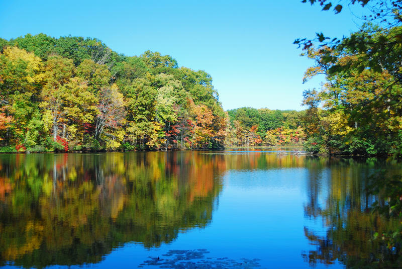 Download Autumn Lake stock photo. Image of camping, bright, beautiful - 11442068