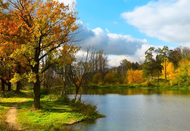 Autumn lake stock photography