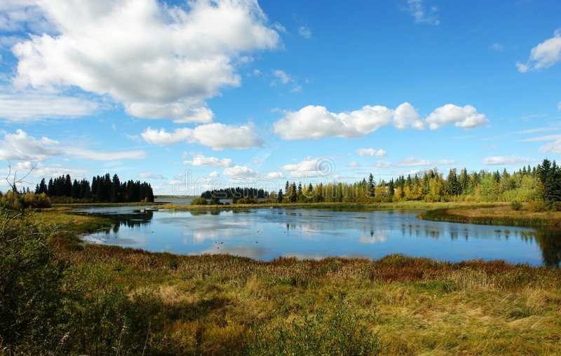 Download Autumn lake stock photo. Image of alberta, view, outdoor - 4414714