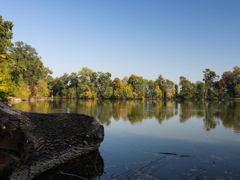 Colorufl trees in autumn by lake in evening sun. Autumn by lake with colorful trees in evening light and blue sky royalty free stock image