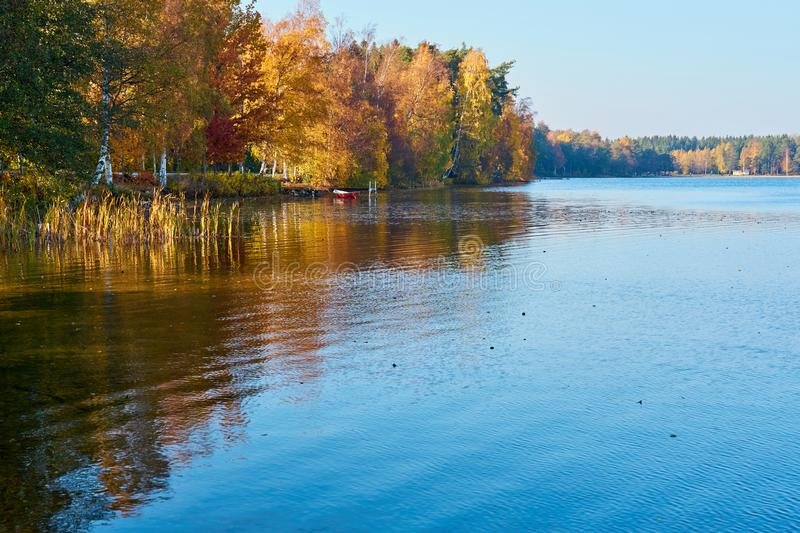 Autumn on the lake. Colorful trees are reflecting in water. Blue sky on a sunset royalty free stock photo