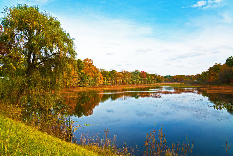 Autumn Lake. An exquisitely colorful autumn scene reflected from a lake near Paw Paw, Michigan royalty free stock photos