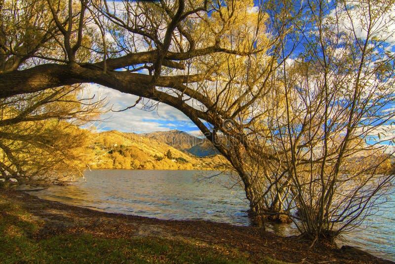 Autumn Lake Hayes nära byn Arrowtown, Otago pilföreningspunkt, vägtur från Queenstown till Wanaka, nyazeeländsk södra ö fotografering för bildbyråer