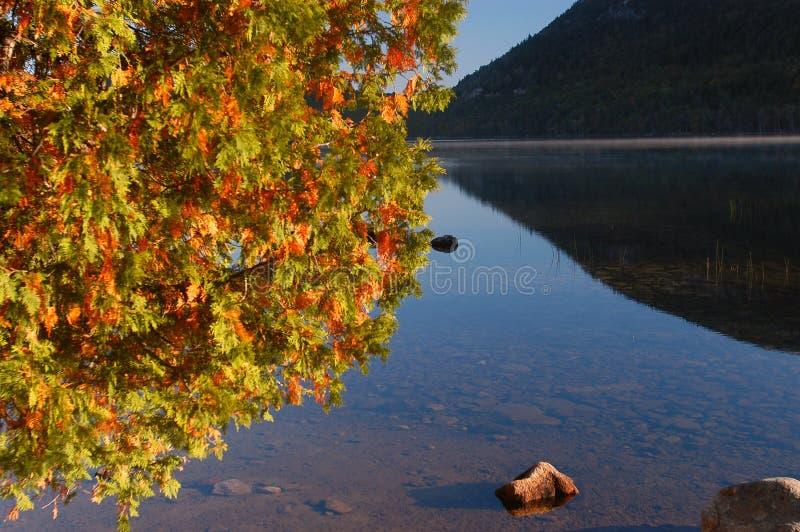 Autumn lake in Maine royalty free stock photos