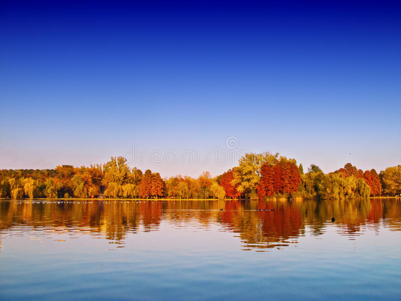 Autumn lake scenery. Blue sky and colored trees stock photos