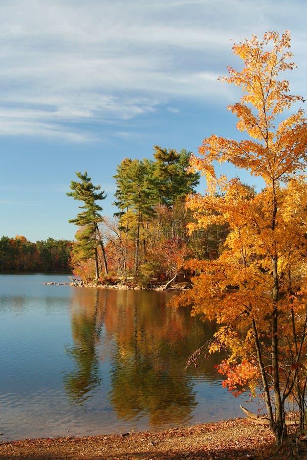 Autumn Lake scenic royalty free stock images