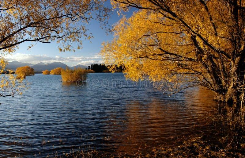 Autumn at Lake Tekapo NZ (16) stock image
