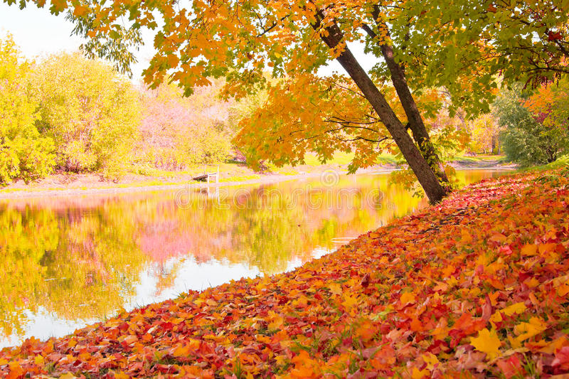 Download Autumn landscape stock image. Image of colorful, autumn - 16270213