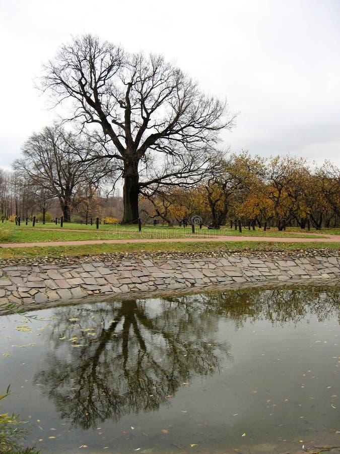Download Autumn landscape stock image. Image of garden, scarlet - 21043941