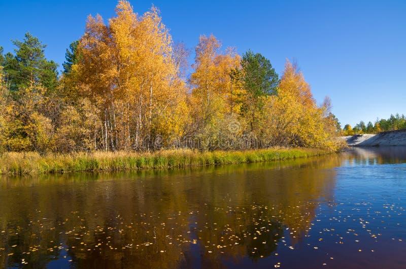 Download Autumn Landscape stock photo. Image of lake, autumn, river - 21271118