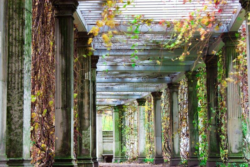 Download Autumn Landscape Stock Photography - Image: 21508122