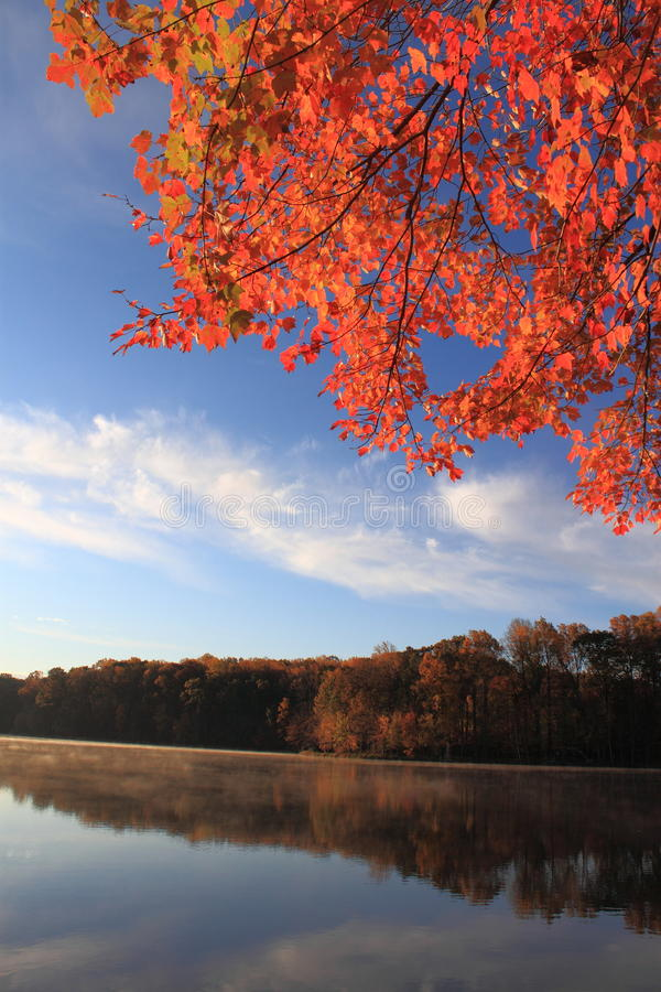 Autumn Landscape. With colorful tree leaves and partly white cloud near lake river stock images