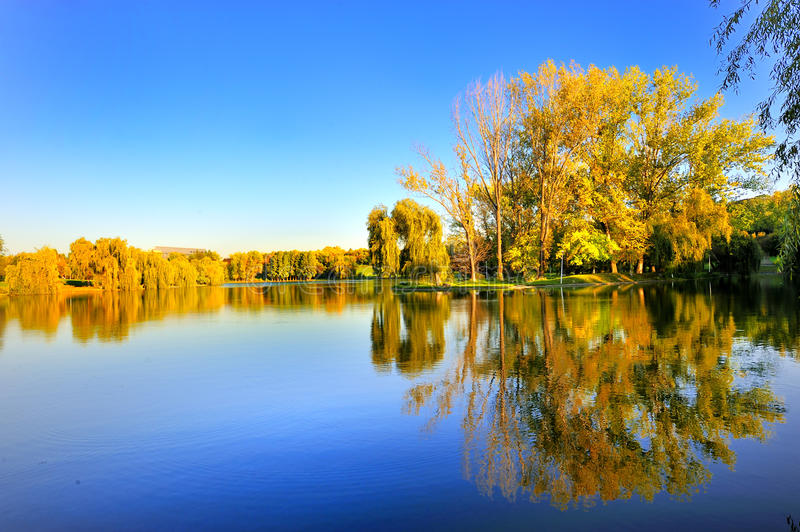 Autumn landscape. Beautiful autumn landscape with trees and lake royalty free stock photo