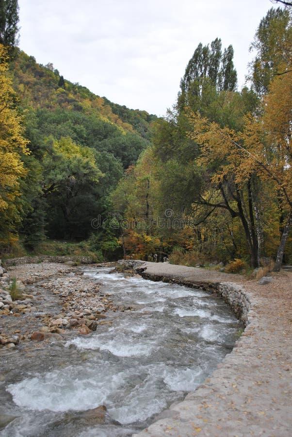 Autumn Landscape photographie stock libre de droits