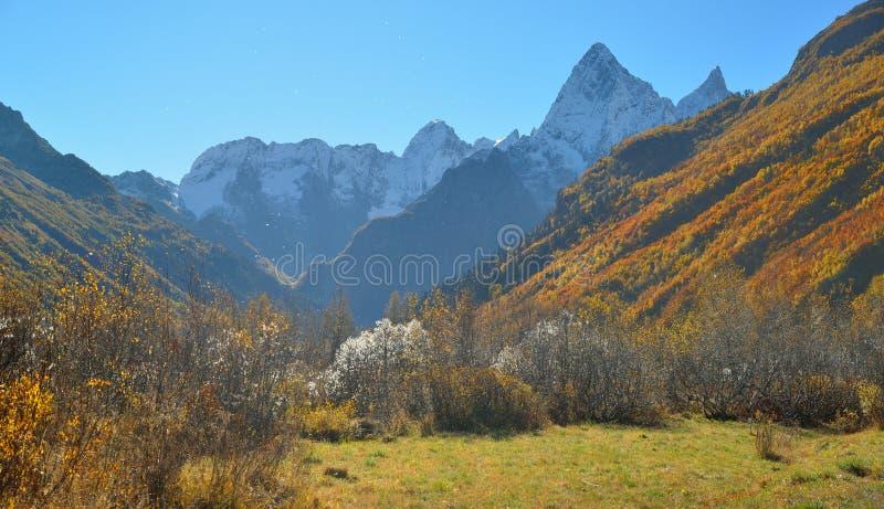 Autumn Landscape fotografie stock libere da diritti