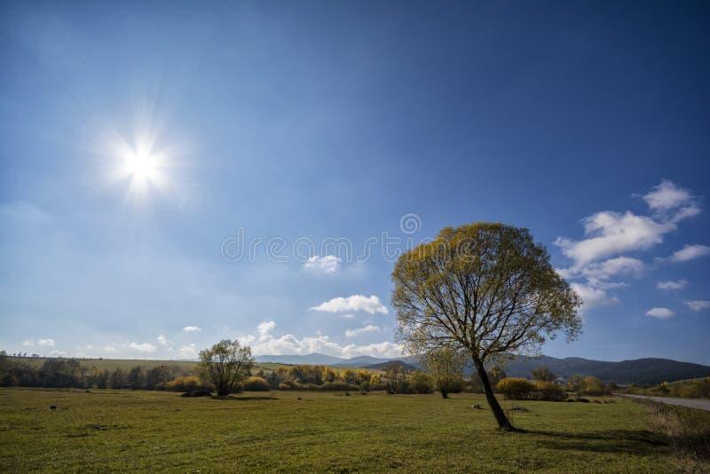 Autumn Landscape photo libre de droits