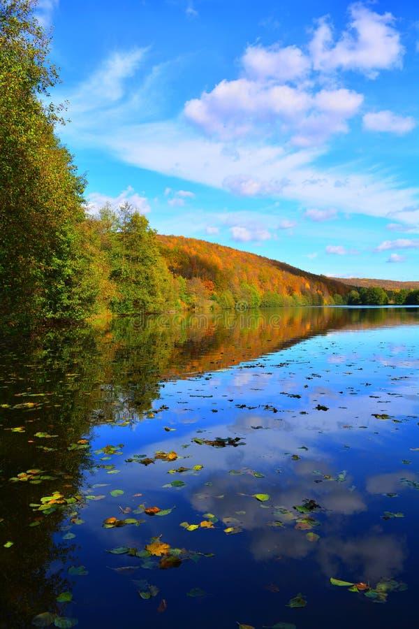Autumn Landscape stockbild