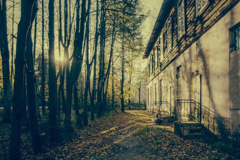 Autumn Landscape, imagem de stock royalty free
