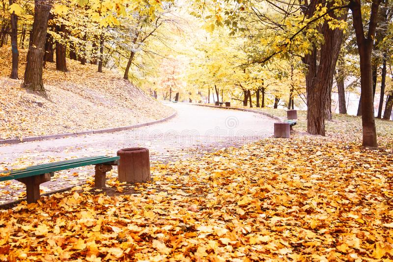 Autumn landscape. Autumn Park. Autumn days. Autumn mood. Carpet. Of leaves royalty free stock photo