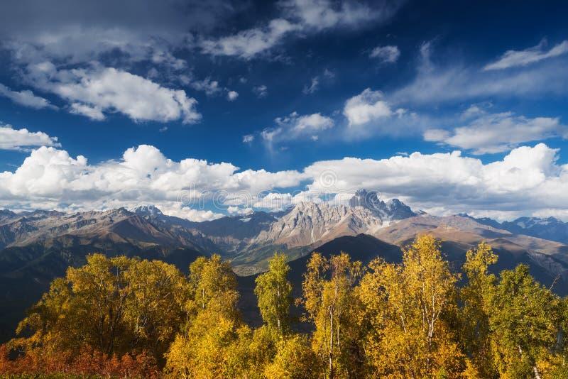 Autumn Landscape avec la forêt de bouleau et la gamme de montagne photo libre de droits
