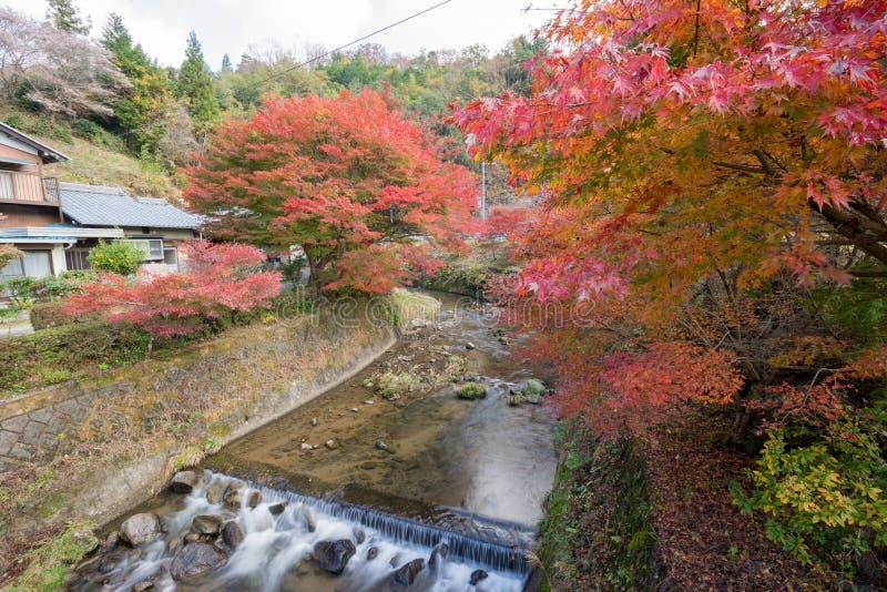 Autumn landscape background Red leave in Obara Nagoya Japan royalty free stock photos