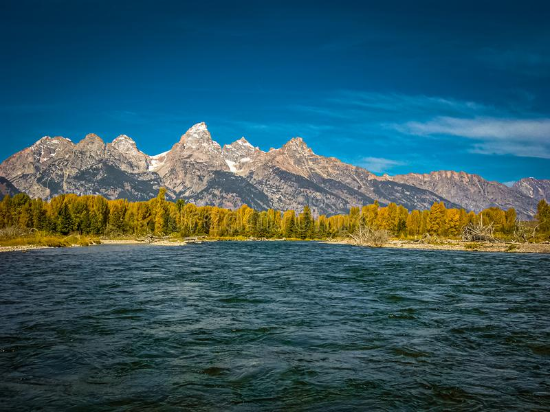 Evening Shadows on Autumn Leaves and the Tetons royalty free stock image