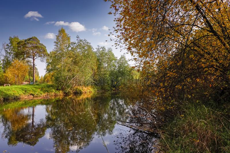 Autumn landscape on the banks of a forest river on a sunny warm day. royalty free stock photography
