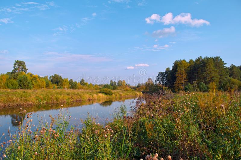 Autumn landscape on the banks of a forest river on a sunny warm day. stock photos