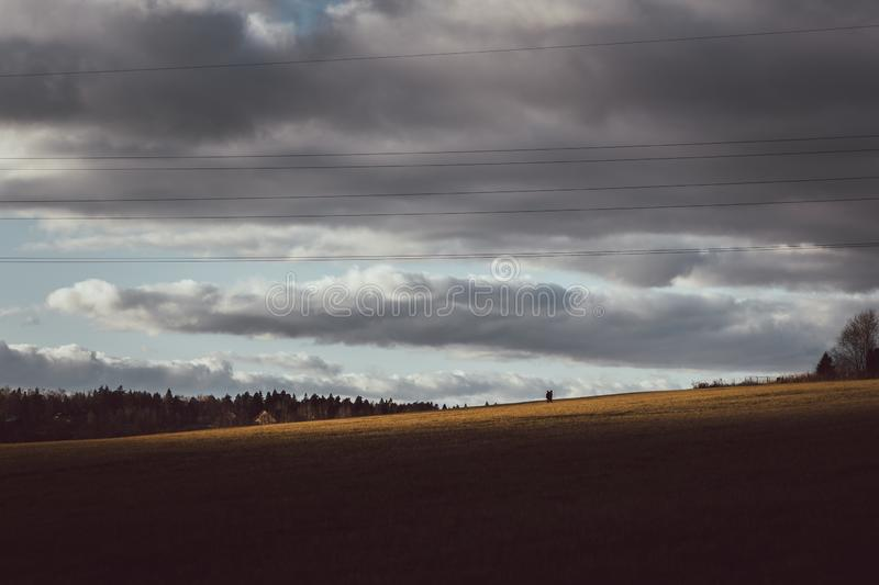 Autumn landscape. Beautiful field with Golden grass on the background of cloudy stormy sky and clouds. A couple of people walking. On the autumn field stock images