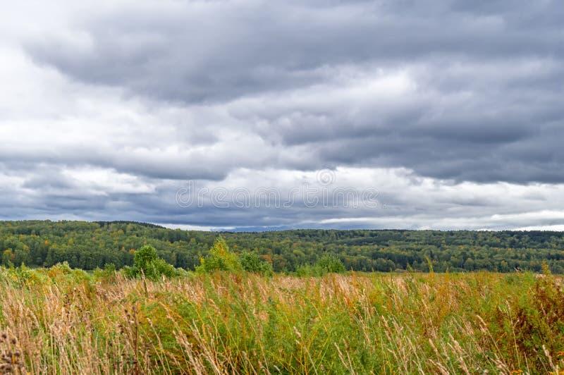 Autumn Landscape Bewolkte dag met donkere wolken over geel gebied Bewolkt tarwegebied Het landschap van de de herfstaard stock foto's