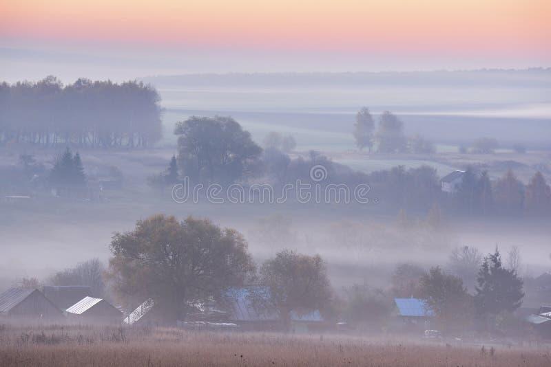 Autumn Landscape Campi ed alberi in foschia all'ora del blu di alba fotografie stock libere da diritti