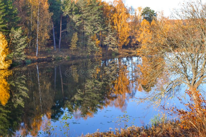 Autumn landscape with colorful forest. Colorful foliage over the lake with beautiful forests in red and yellow colors. Autumn fore. St is reflected in the water stock photography