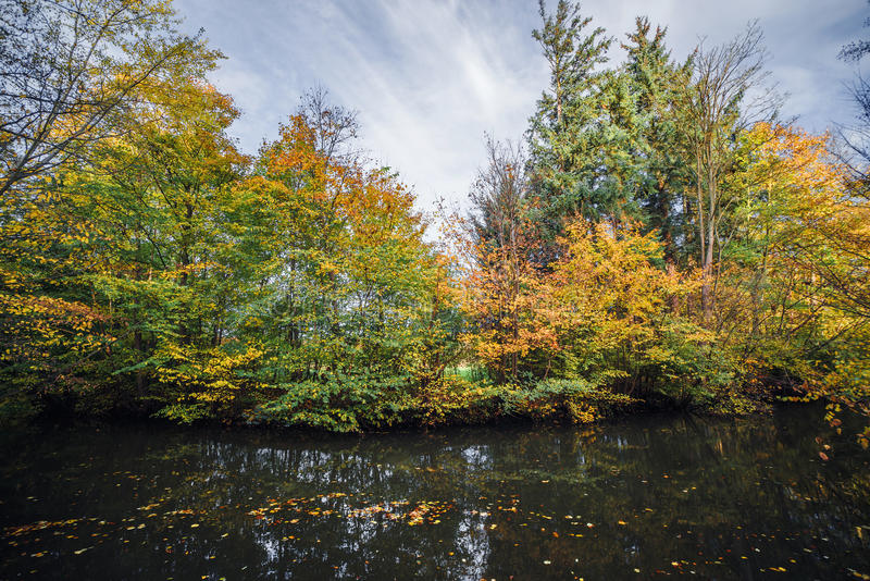 Autumn landscape with colorful trees in the fall. By a dark river with autumn leaves in the water in the fall royalty free stock images