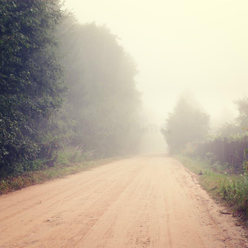 Autumn Landscape con el camino en niebla foto de archivo
