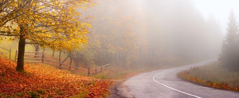 Autumn Landscape De achtergrond van de herfst Rode en oranje het bladclose-up van de kleurenKlimop royalty-vrije stock foto's