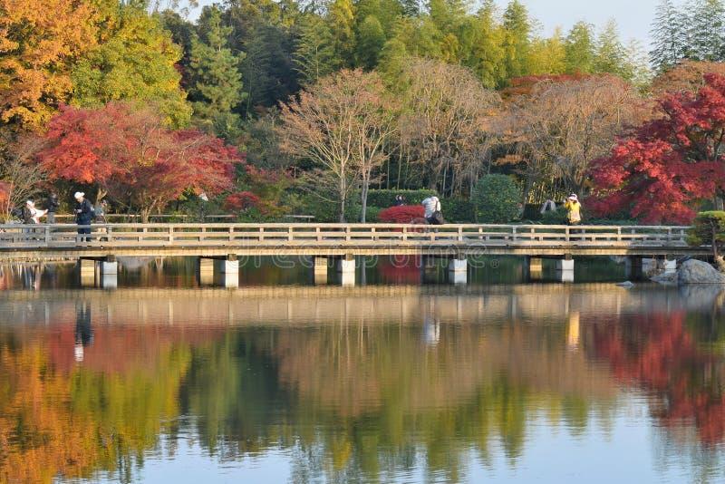 Autumn Landscape do jardim japonês no Tóquio fotos de stock