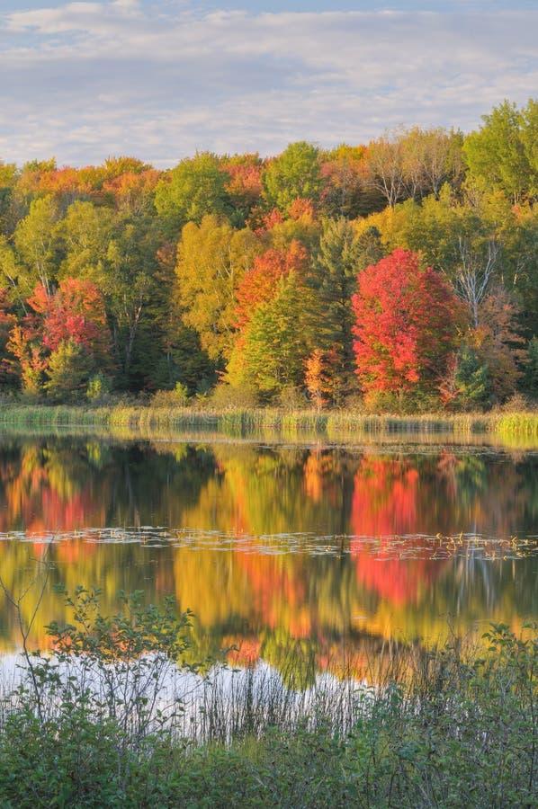 Autumn Landscape Doe Lake royalty free stock photo