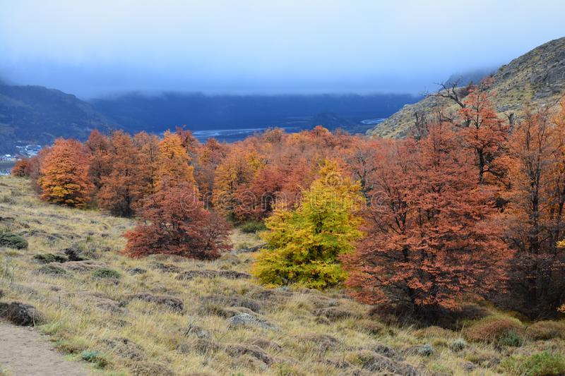 Autumn landscape in El Chalten Patagonia Argentina stock photography