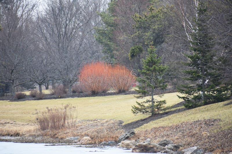 Autumn Landscape en el Cercano oeste imagen de archivo libre de regalías