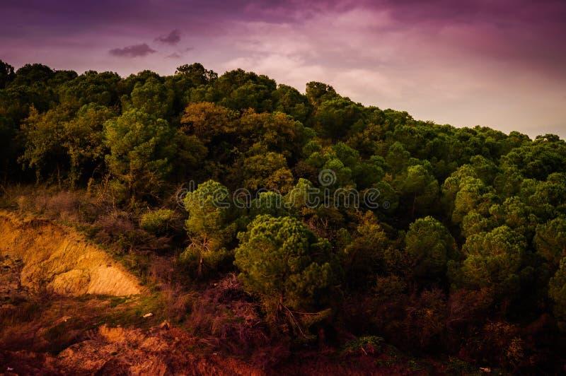 Autumn Landscape Environment pastoral imágenes de archivo libres de regalías